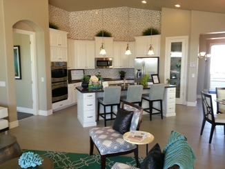 Amazing Kitchens in Cypress Homes